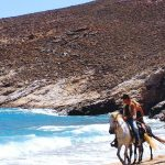 Mykonos horse riding - Horseland Mykonos