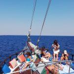 Daily Rhenia – Delos Cruise from Mykonos